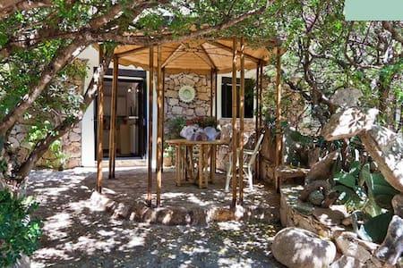 Sardinien San Teodoro Intimate Stud - San Teodoro - Appartamento