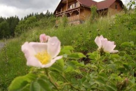 Ubytování pod Březím- rekreace blízko lesa - Prostřední Bečva - Entire Floor