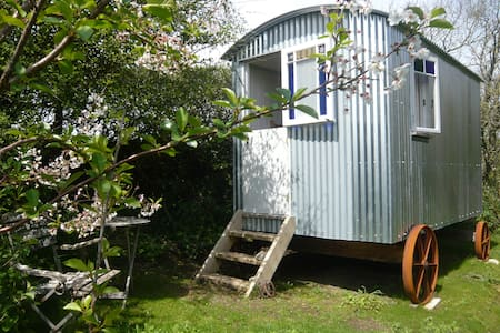Cornish Shepherds Hut in beautiful West Cornwall - Hut