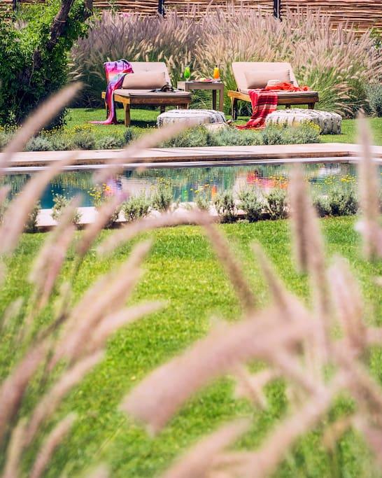 Jardin et piscine de la villa