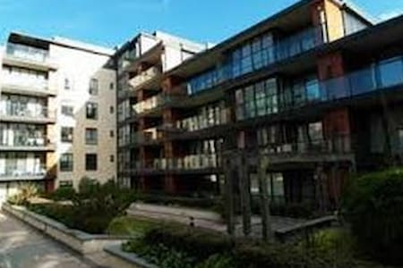 Luxury apartment in South Dublin - Appartement