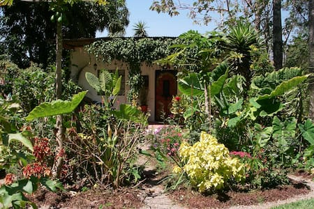 'La Luna' in the Magical Garden