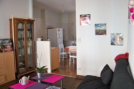 Appartement sympa, idéalement placé - Gap - Daire