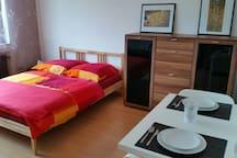 1 Zimmer Appartement nahe Rhein