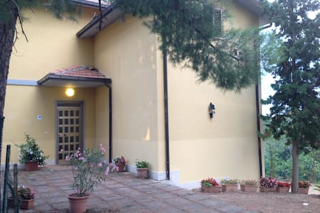 bed and breakfast in campagna - Bed & Breakfast