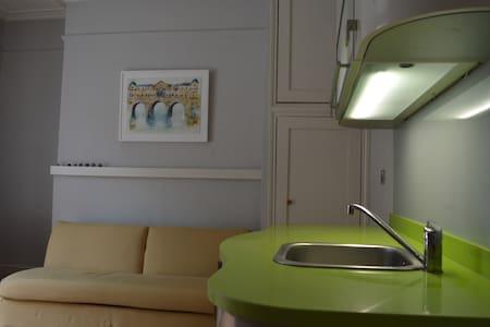 Bijou studio central opposite park - Apartment