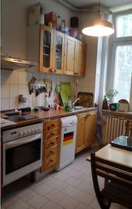 Schönes Zimmer + Küche/Bad im Herzen Braunschweigs - Brunswick - Lejlighed