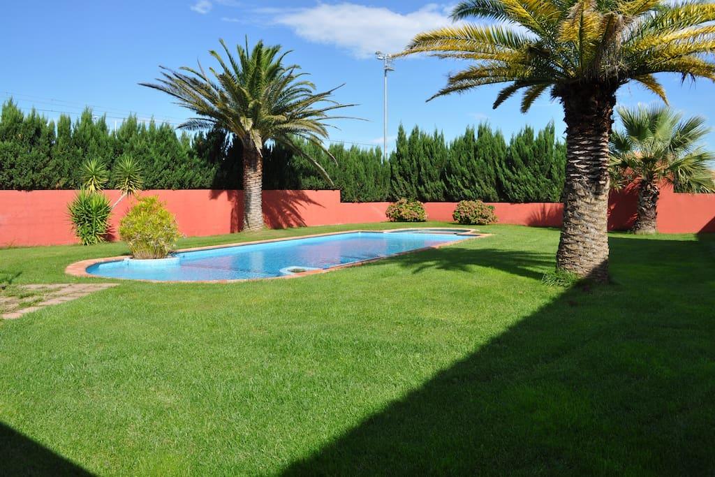 La piscine au sel et bronzette sur le gazon...