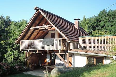 Ferienhaus in den Südsteirischen Weinbergen - Ratsch an der Weinstraße - Dom