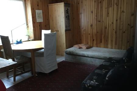 Studio dans maison individuelle avec jardin - Laxou