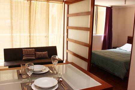 Apartment in Bellas Artes