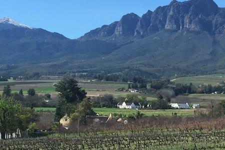 Vineyard views, fresh air and peace - Vila