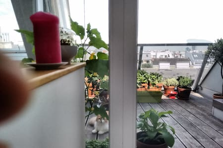 Maisonette Penthouse - 75 m2 - Apartment