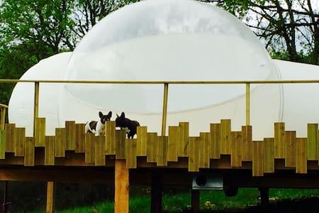 Bulle luxe salle d'eau toilette - Cahors - Tent