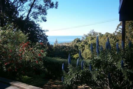 Escarpment retreat, ocean views. - Wombarra - Apartment
