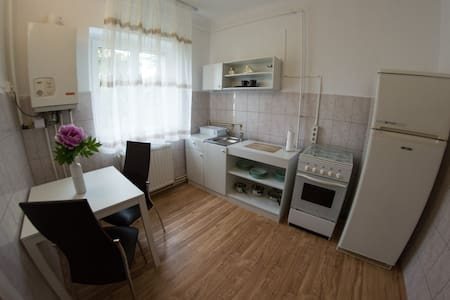 Ecaterina - Ultra Central Cozy & Silent Apartment - Apartment
