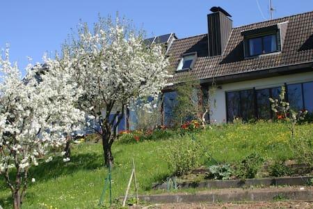 Ferienwohnung am Sonnenhang - Tengen-Büßlingen - Pis