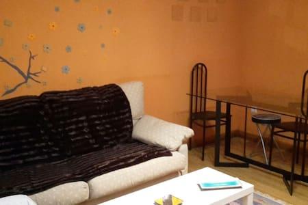 Piso céntrico en Laguardia- Alava - Apartamento