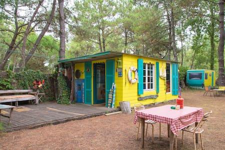 Cabane sous les pins , près  de l'océan- Vendée - La Faute-sur-Mer