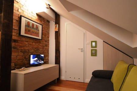 Mini studio  z łazienką na poddaszu - Apartmen