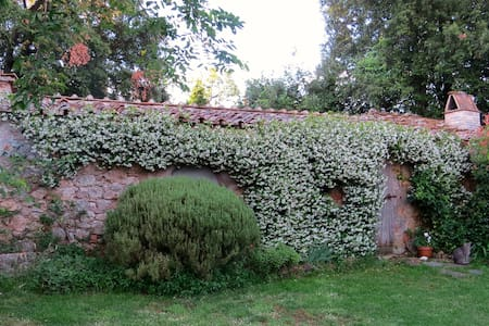 casetta nel giardino - Hus
