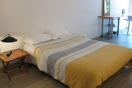 Chambre autonome très spacieuse avec douche/wc - Dom