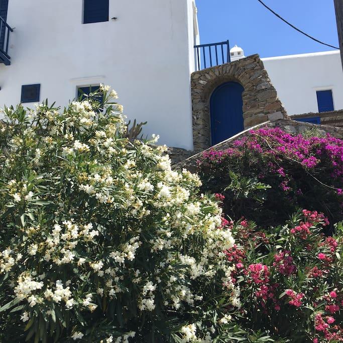 Mykonos View Town House