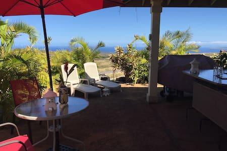 Waikoloa Humuhumunukunukuapuaa Room - Waikoloa Village