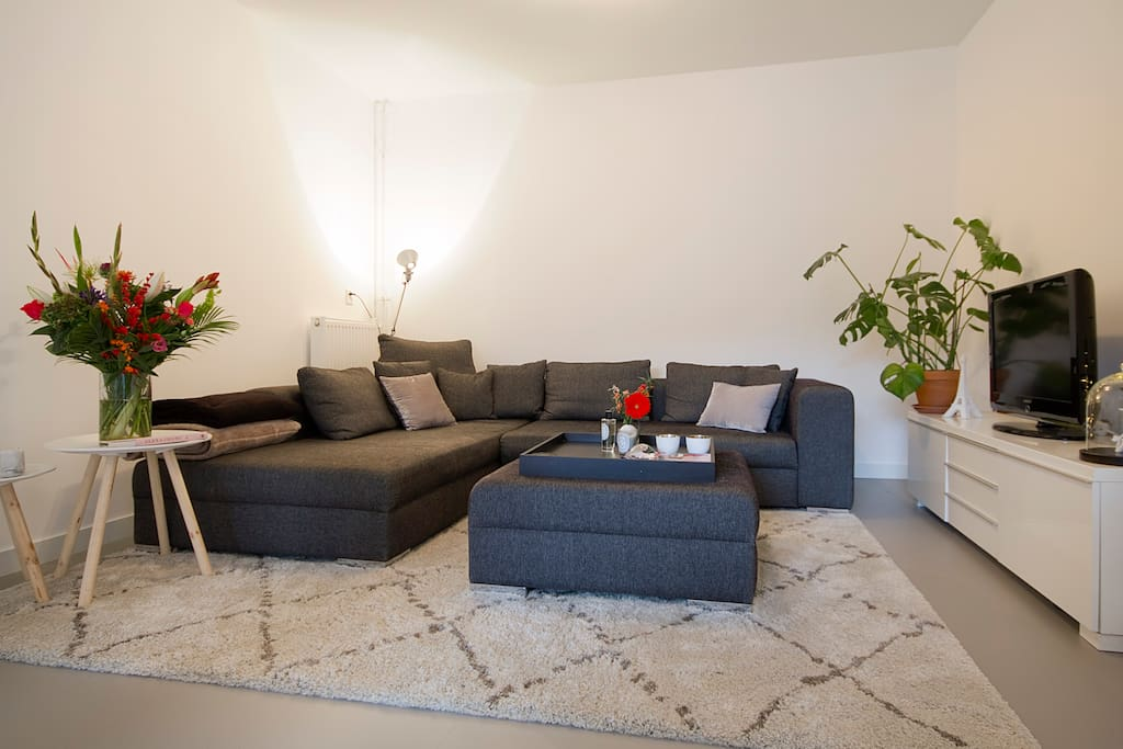 Beautiful large livingroom with flat screen tv  and XL couch