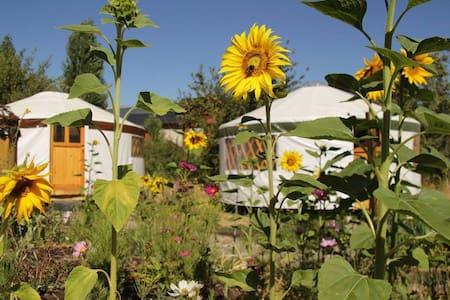 Eco Yurt: Earthship Patagonia Cozy Holistic Space - El Bolsón - Iurta