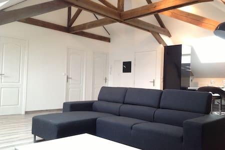 Loft T3 90m2 maison de maître - Aulnoy-Lez-Valenciennes - Apartament