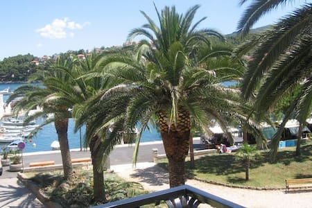 Family Hotel ZARDIN, single room (0) - Jelsa