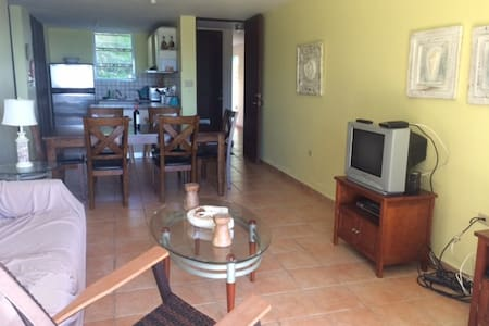 Paradise in Maunabo - Maunabo - Appartement