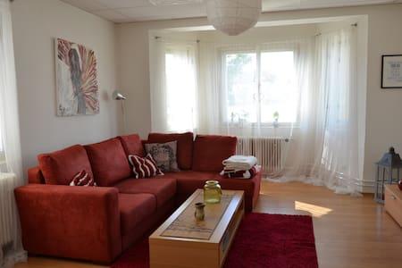 Spacious apartment in family house with garden - Villa