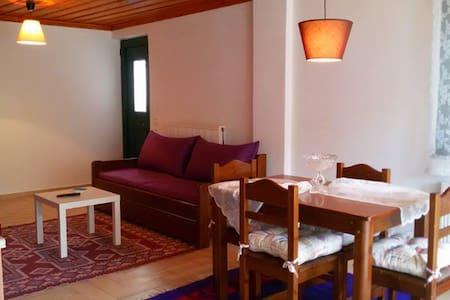 Παραδοσιακό πέτρινο διαμέρισμα 2 - Apartament