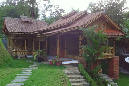WI bacpaker village house blitar - House