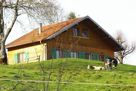 La Bergerie. Chalet montagne proche LA BRESSE - Ev
