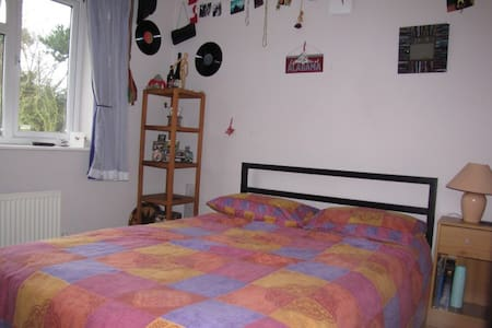 Bright, comfortable double room - House