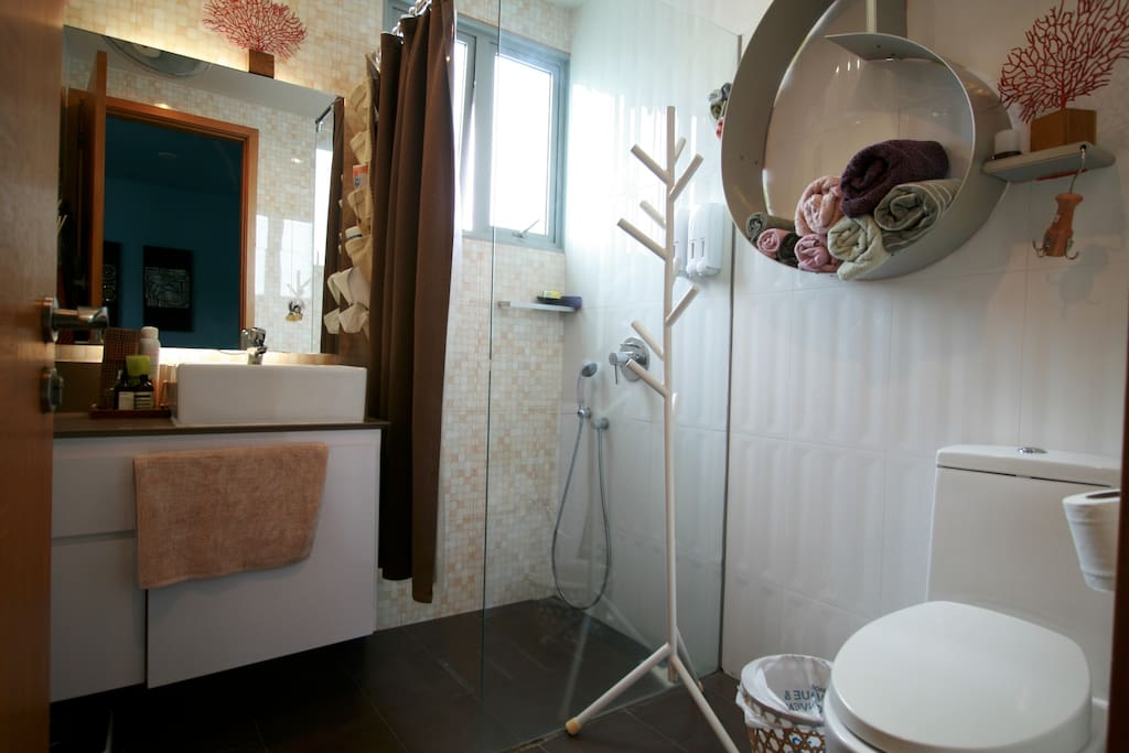 Private, ensuite bathroom with shower and commode with bidet.  It is 4.35 sq metres.