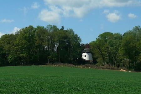 Windmill Schneeren - Huis