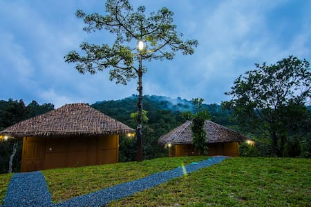 Experience eco-tranquility & local living, Wayanad - Natuur/eco-lodge
