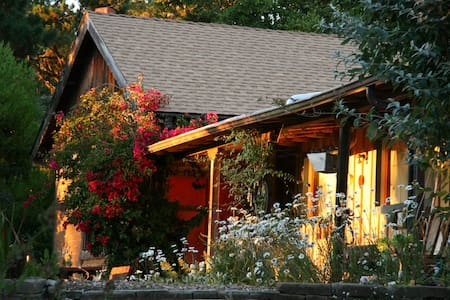 Cathedral Redwood Studio with loft - Carmel Highlands - Muu
