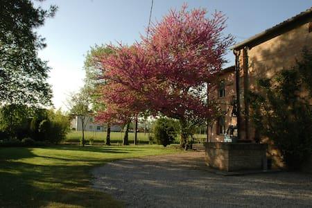 Casa nella campagna vicino a Ferrara - Gambulaga