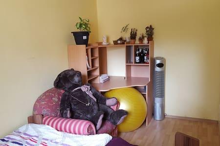 Gästezimmer in 2er WG mit Katzen, nördl. Zellerau - Condominium