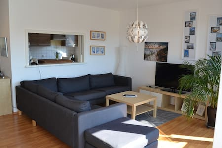 nice spacious 2 room apartment - Friedrichshafen - Huoneisto