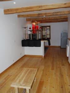 T2 MEUBLE VIEILLE VILLE CITE VAUBAN - Apartment