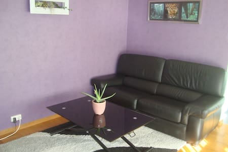 Appartement T3 confort au calme. - Oullins - Byt