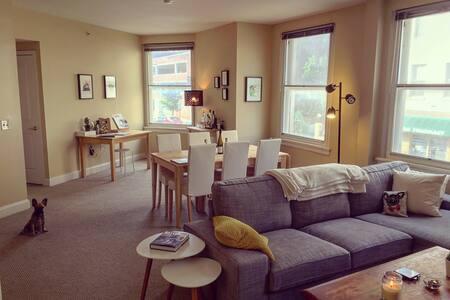Friendly apartment in historic Mount Vernon - Lägenhet