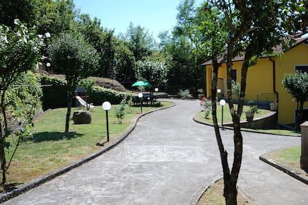 """Casa vacanze """"IL VIGNETO""""..20 km from Cinque Terre - Sesta Godano - Haus"""