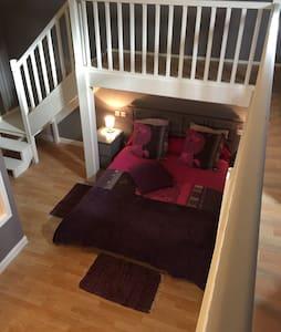 Bel appartement 150 m2 Castres - Castres  - Apartment